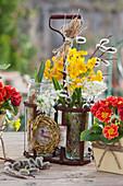 Kleine Frühlingsdeko mit Primeln und Milchstern im Flaschenträger, Weidenkränzchen und Weidenkätzchen