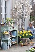 Osterterrasse mit Felsenbirne, Osterglocken, bepflanzter Kasten und Zinkeimer, Frau mit Holzosterhase