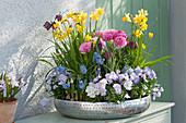 Silberschale mit Narzissen, Ranunkeln, Hornveilchen, Traubenhyazinthen und Schachbrettblume