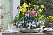 Silberne Schale mit Narzissen, Ranunkeln, Schachbrettblumen, Hornveilchen und Traubenhyazinthen