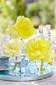 Begonia 'Fragrant Falls ® Yellow'