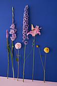 Blüten von Lythrum, Gladiole, Dahlie, Rittersporn und Lilie vor blauer Wand
