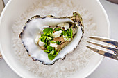 A fresh oyster, garnished with herbs