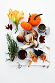 Stilleben mit Herbstgemüse, Pilzen, Beeren, Gewürzen und Thymian