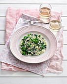 Green rapini and beer risotto