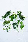 Various herbs on a white surface