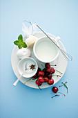 Stilleben mit Milch, Zucker, Kirschen, Zitrone, Ei und Minze