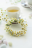Camomile flowers with a teacup on a festive table