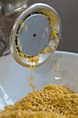 Mustard seeds being ground