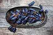 Blaue Weintrauben in Keramikschale