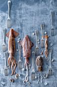 Tintenfisch-Gabel-Stilleben