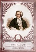 Luigi Galvani, Italian Physician and Physicist