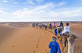 Sahara Desert Sand Dunes, Morocco