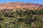 Atlas Mountains, Tinghir Oasis, Morocco