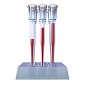Blood Pipettes, Illustration