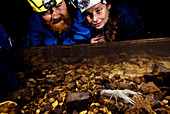 Biologists with Cave Crayfish
