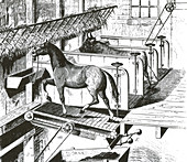 Horse Powered Stall Cleaner, 1880
