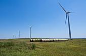 Wind Power Turbines, OR
