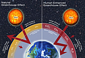 Greenhouse Gas Effect