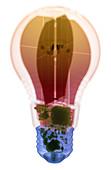 Energy Efficient LED Light, X-ray