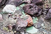 Blue Basin Stream, John Day Fossil Beds, USA