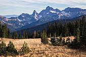Unicorn Peak Mt Rainier National Park, USA