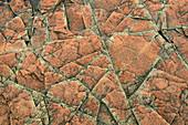 Rock Pattern, Minnesota, USA