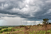 Storm Clouds, Odzala National Park, Congo