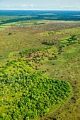 Grassland Aerial View, Congo