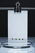 Paper chromatography, 1 of 3