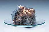 Steel wool burning, 2 of 3