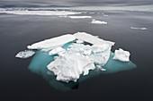 Ice floe in the arctic ocean