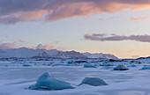 Sunrise over icebergs, Iceland