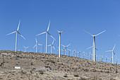 Windmills on hillside, California, USA