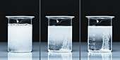 Lithium Carbonate Reacts with Sulfuric Acid