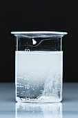 Lithium Carbonate Sulfuric Acid Reaction, 2 of 3