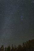 Night Sky from Boulder Mountain, Utah