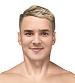 Man's portrait, illustration