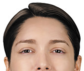 Female face, illustration