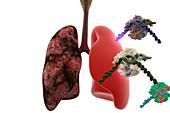 Lung Cancer Treatment, CRISPR-Cas9