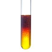 Iron (III) hydroxide precipitation