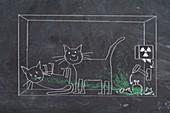 Schrodinger's cat, illustration