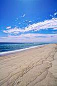 Beach, Cape Cod National Seashore, Massachusetts, USA