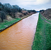 Pollution in Trent and Mersey canal, Staffordshire, UK