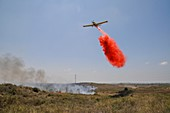 Aircraft dropping fire retardant on a wildfire, Israel