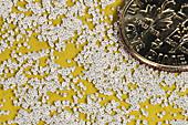 Macro of Table Salt & a Dime