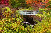 Hiking Trail Footbridge