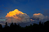 Cumulus clouds