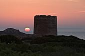 Spanish Tower, Isola Rossa