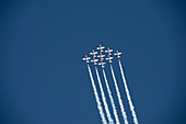 Royal Canadian Snowbirds flying in formation